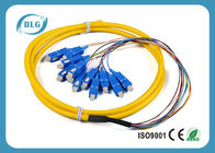 China Yellow Multimode Fiber Optic Patch Cables , 12 Cores St To St Fiber Patch Cable factory